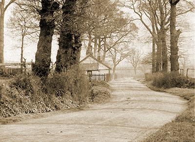 Oxgate Lane